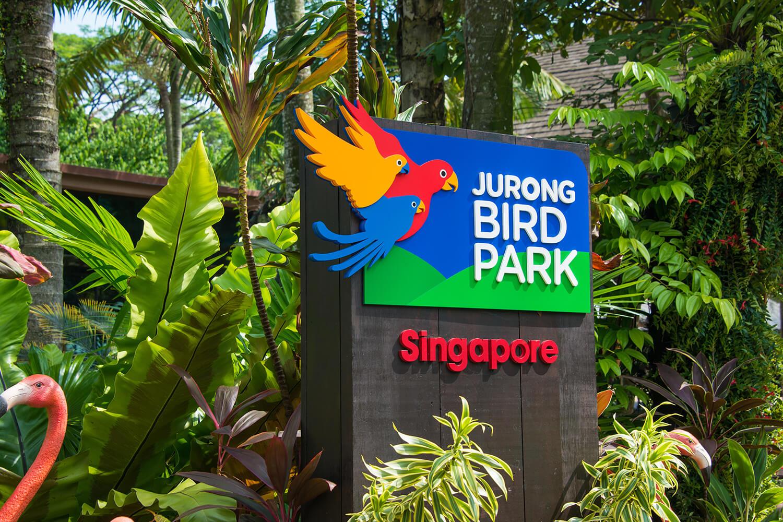 singapore9